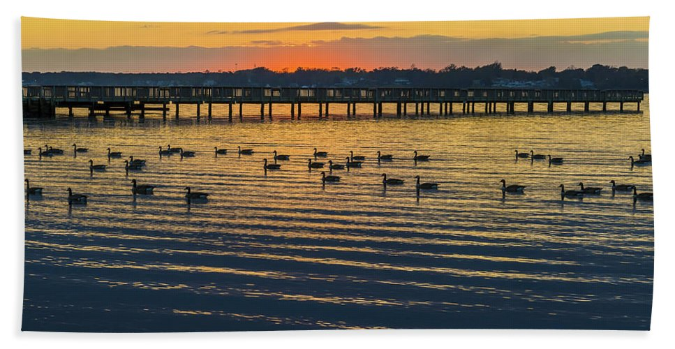 2d Beach Towel featuring the photograph Sunset Geese by Brian Wallace
