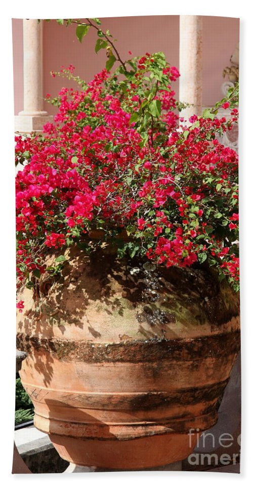 Teracotta Pot Beach Towel featuring the photograph Terracotta Pot by Christiane Schulze Art And Photography