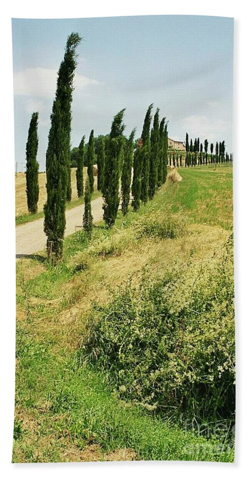 Cypress Beach Towel featuring the photograph Tuscany Landscape by Christiane Schulze Art And Photography