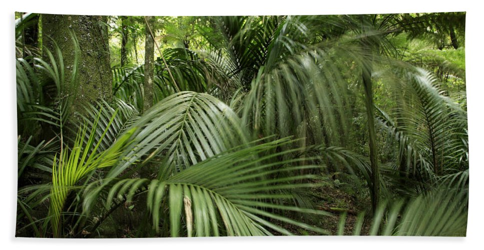 Forest Beach Towel featuring the photograph Jungle by Les Cunliffe