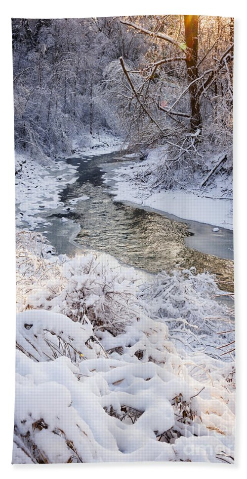 Winter Beach Towel featuring the photograph Forest Creek After Winter Storm by Elena Elisseeva