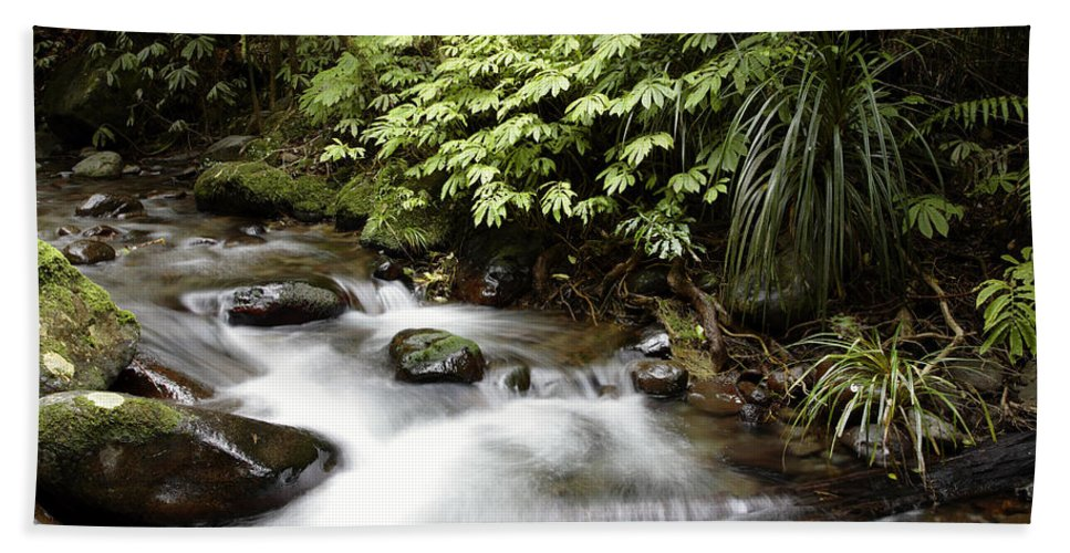 Stream Beach Towel featuring the photograph Forest Stream by Les Cunliffe
