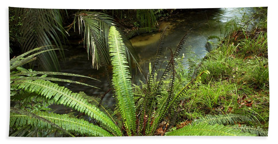 Brook Beach Towel featuring the photograph Jungle Stream by Les Cunliffe