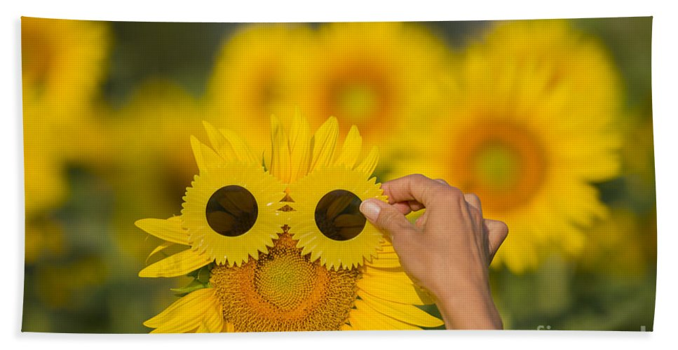 Sunflower Beach Towel featuring the photograph Sunflower by Mats Silvan