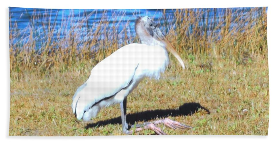 Resting On His Knees At Lakes Park In Ft.myers Beach Towel featuring the photograph Woodstork by Robert Floyd