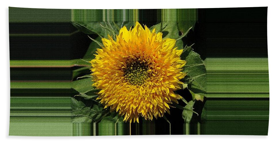 Dwarf Beach Towel featuring the painting Dwarf Sunflower Named Teddy Bear by J McCombie