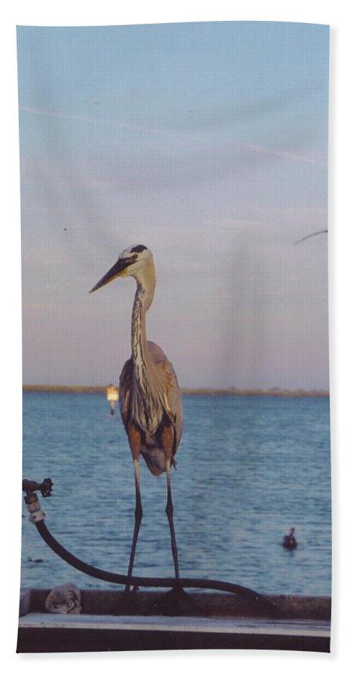 Matlacha Boat Dock Beach Towel featuring the photograph Great Blue Heron by Robert Floyd