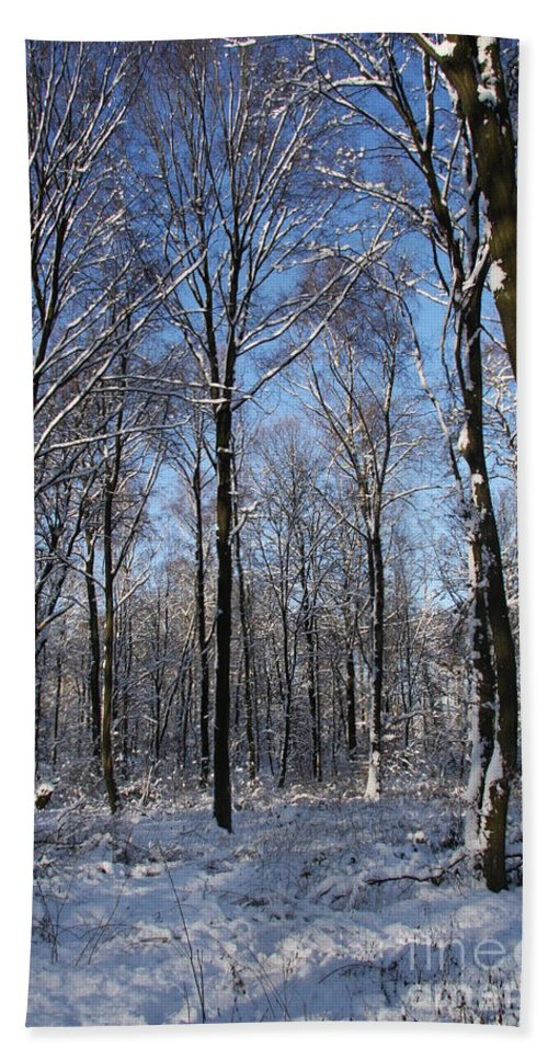 Winter Beach Towel featuring the photograph Snowy Landscape by Christiane Schulze Art And Photography