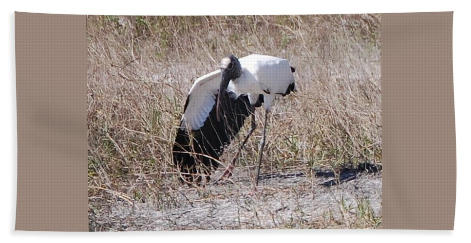 Big Stretch.shadeing Beach Towel featuring the photograph Wood Stork by Robert Floyd