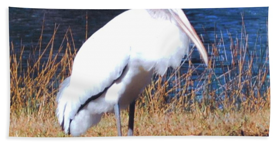 Resting Its Feet At Lakes Park In Ft.myers Beach Towel featuring the photograph Woodstork by Robert Floyd