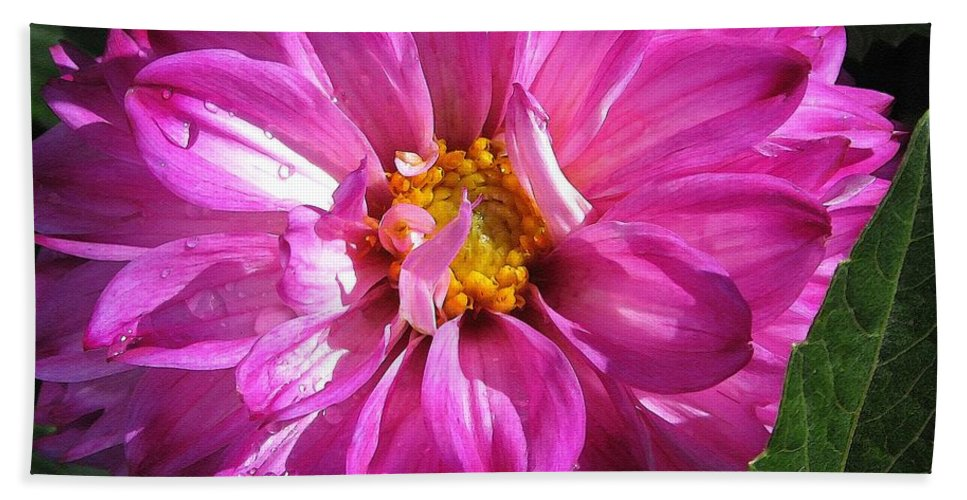 Dahlia Beach Towel featuring the painting Dahlia Named Pink Bells by J McCombie