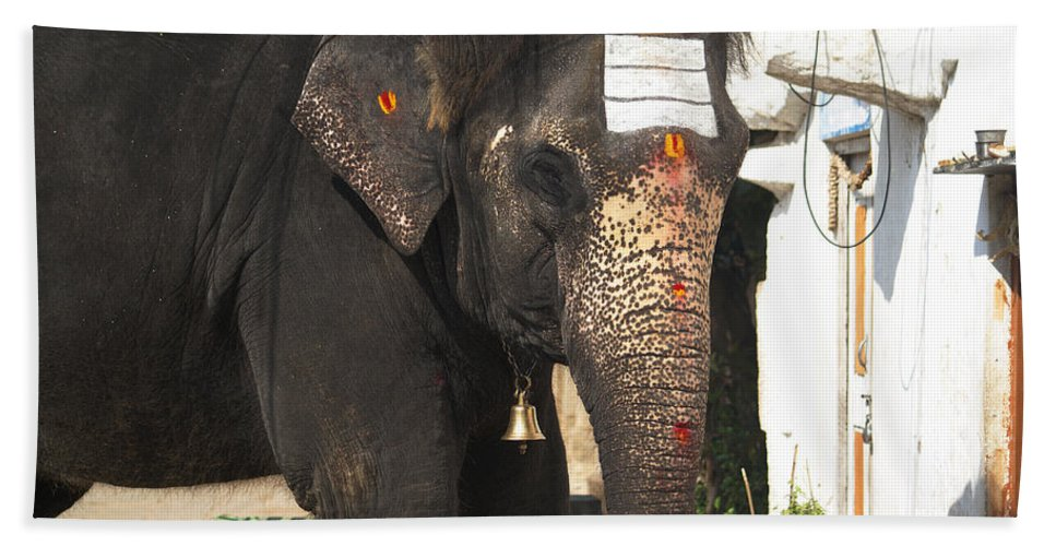 Hampi Beach Towel featuring the digital art Lakshmi Temple Elephant by Carol Ailles