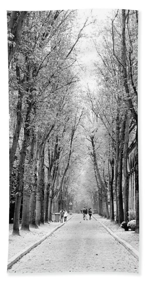 Paris Beach Towel featuring the photograph Pere-lachais Cemetery In Paris France by Richard Rosenshein