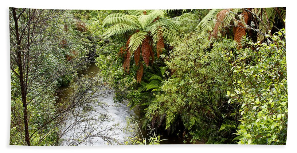 Wilderness Beach Towel featuring the photograph Tropical Forest by Les Cunliffe