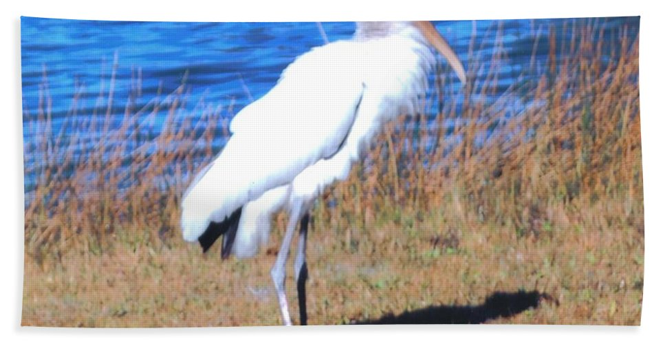 Standing Tall At Lakes Park In Ft.myers Beach Towel featuring the photograph Woodstork by Robert Floyd