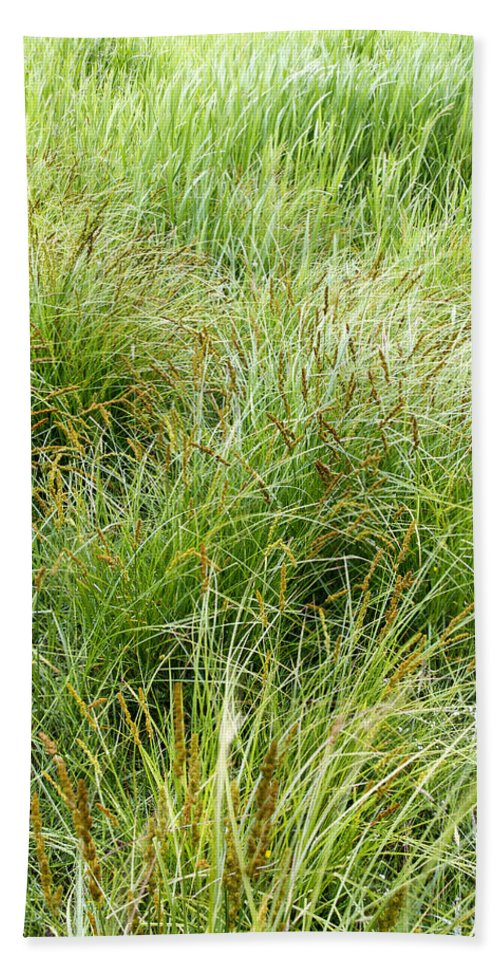 Vertical Beach Towel featuring the photograph Grasses by Les Cunliffe