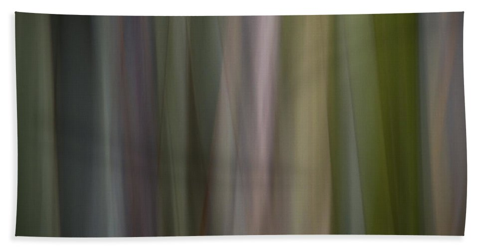 Motion Blur Beach Towel featuring the photograph Blurscape by Dayne Reast