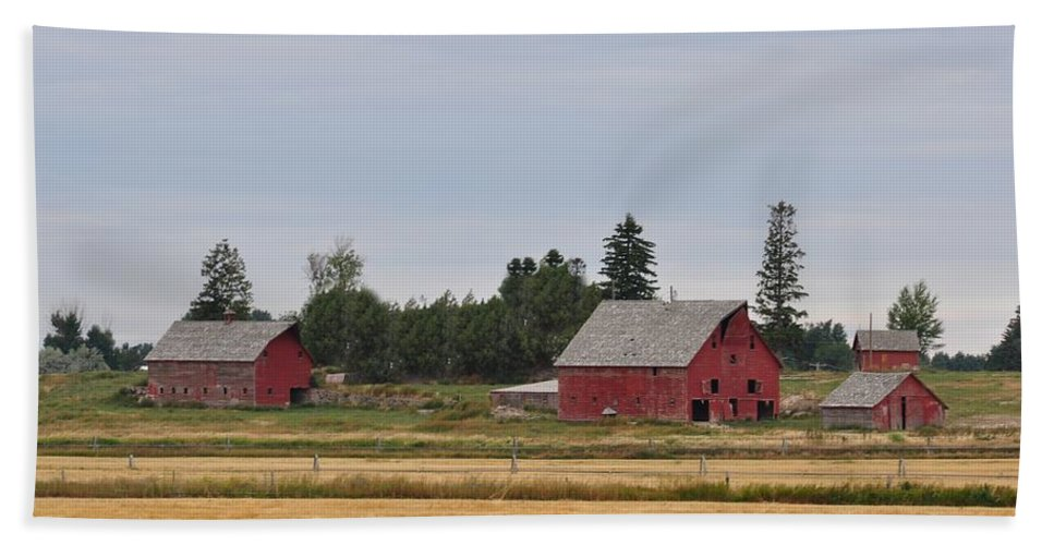 Barn Beach Towel featuring the photograph Idaho Falls by Image Takers Photography LLC