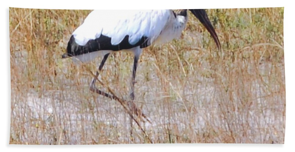 Wading For Food Beach Towel featuring the photograph Wood Stork by Robert Floyd
