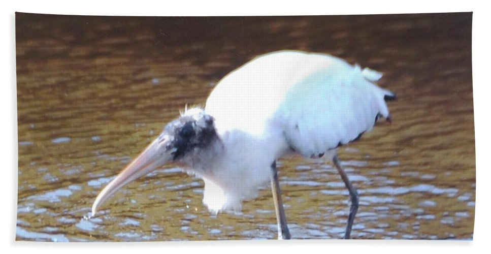 Fishing Beach Towel featuring the photograph Wood Stork by Robert Floyd