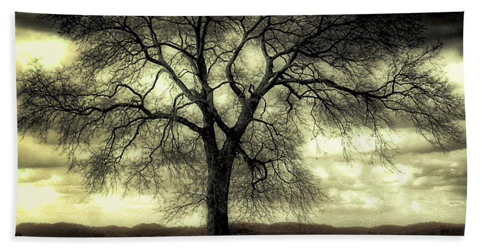 Prairie Beach Towel featuring the photograph A Cold Wind Blows by Dominic Piperata