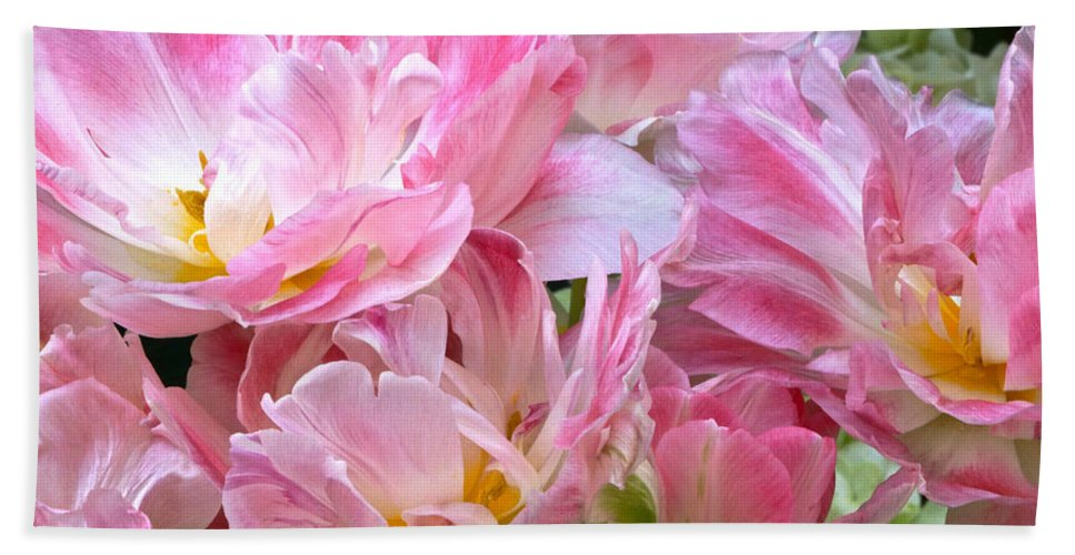 Pink And White Tulip Beach Towel featuring the photograph A Crowd Of Tulips by Byron Varvarigos