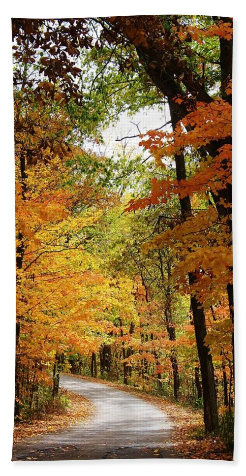 Woodland Beach Towel featuring the photograph A Drive Through The Woods by Bruce Bley