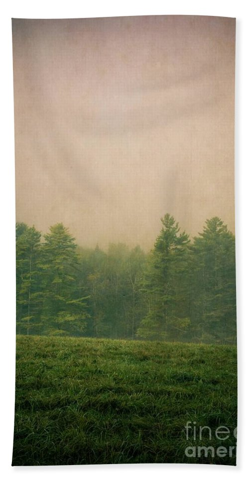 Foggy Beach Towel featuring the photograph A Forest by Edward Fielding