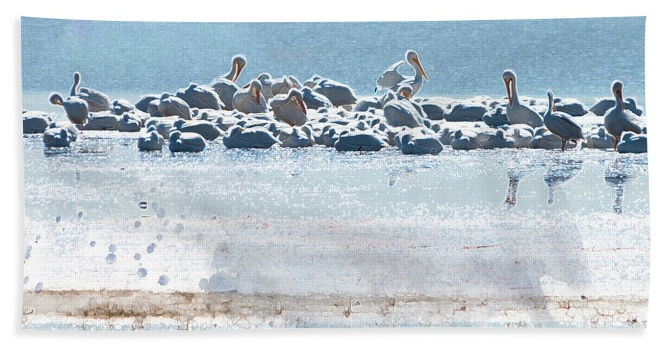 American White Pelican Beach Towel featuring the photograph A Gathering Of Pelicans by Betty LaRue