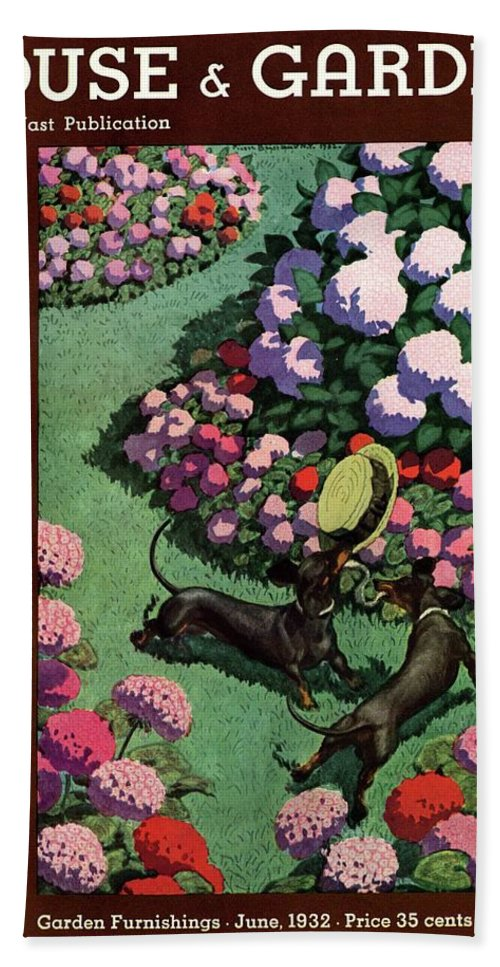 Illustration Beach Towel featuring the photograph A House And Garden Cover Of Dachshunds With A Hat by Pierre Brissaud