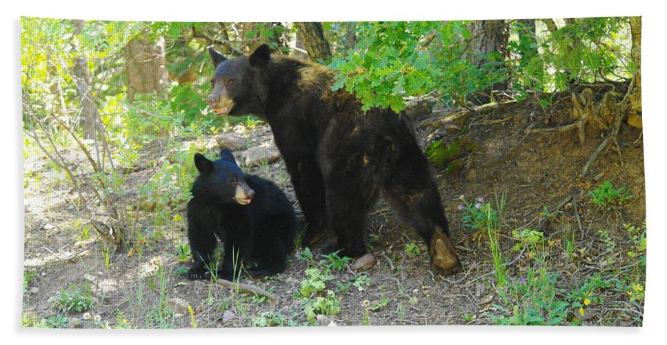 Bears Beach Towel featuring the photograph A Little Growl Before Departing by Jeff Swan