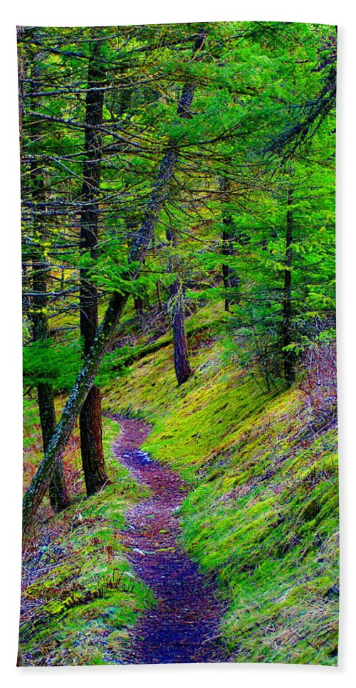 Photo Art Beach Towel featuring the photograph A Magical Path To Enlightenment by Ben Upham III