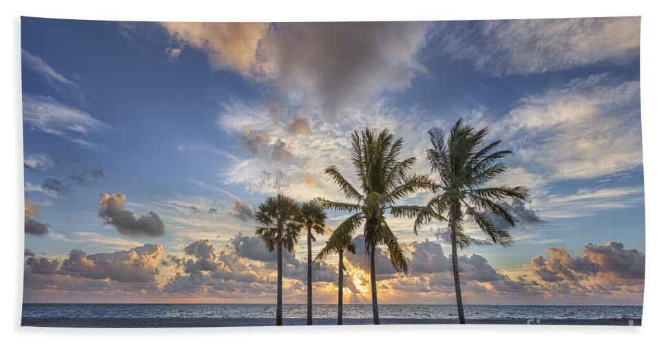 Key Biscayne Beach Towel featuring the photograph A New Tomorrow by Evelina Kremsdorf