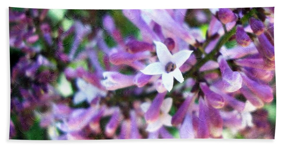 Floral Beach Towel featuring the photograph A Star Is Born by Annie Adkins