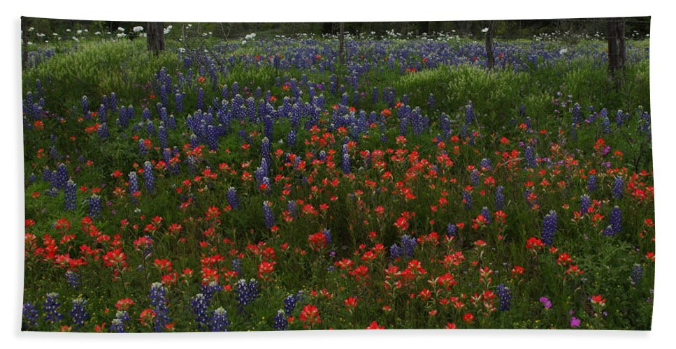 Texas Beach Towel featuring the photograph A Texas Roadside by Susan Rovira
