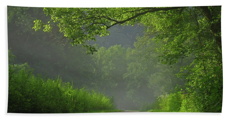 Green Beach Towel featuring the photograph A Touch Of Green by Douglas Stucky