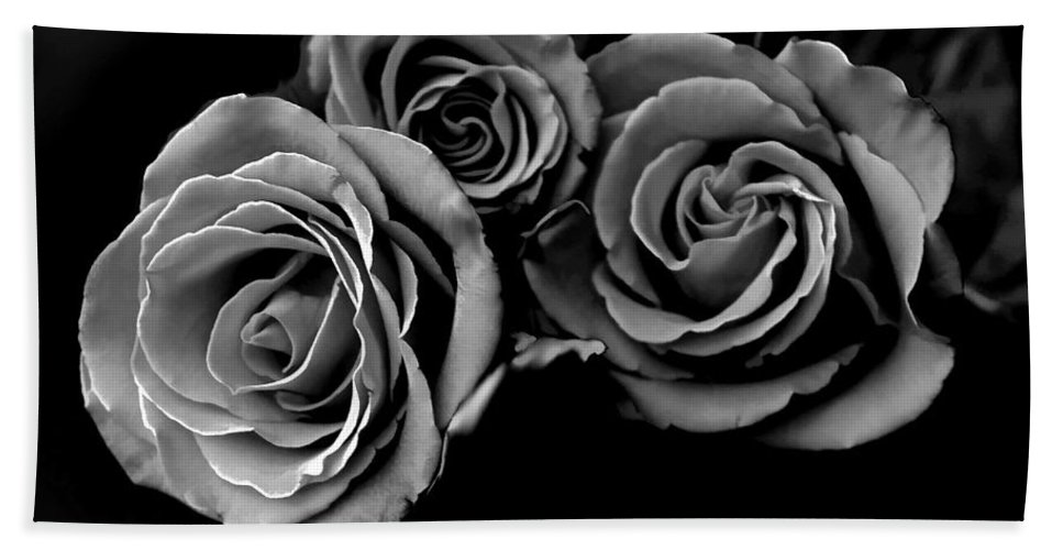 Roses Beach Towel featuring the photograph A Trio Of Roses by Bonnie Willis