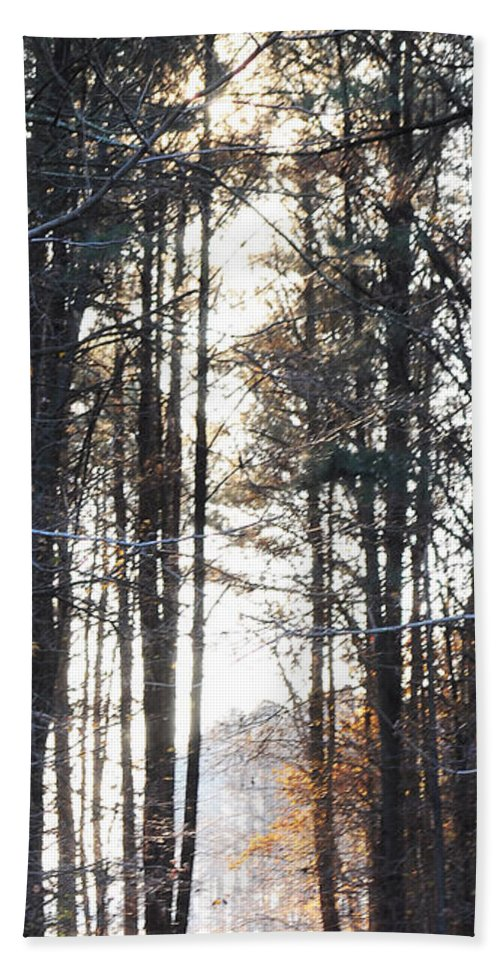 Wright Beach Towel featuring the photograph A Walk In The Park by Paulette B Wright