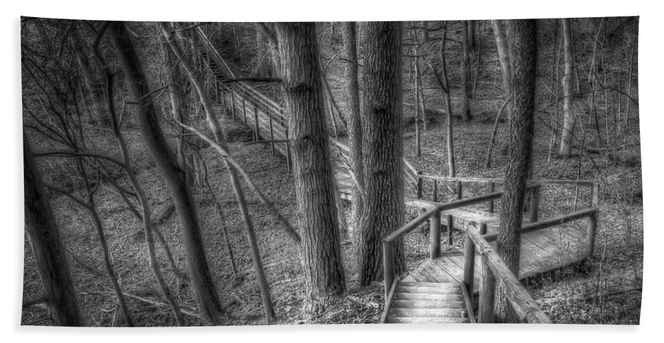 Trees Beach Towel featuring the photograph A Walk Through The Woods by Scott Norris