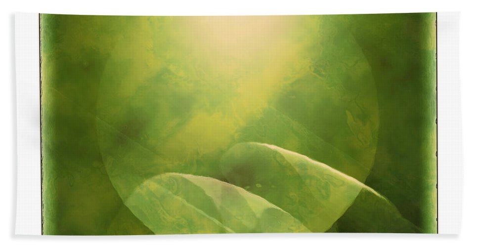 Abstract Beach Towel featuring the photograph Abstract Globe by Susan Leggett