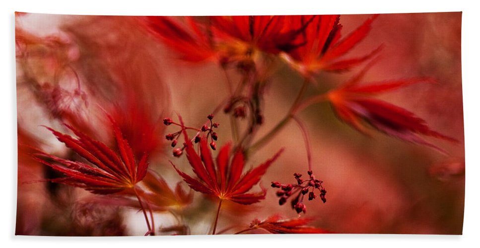 Acer Beach Towel featuring the photograph Acer Storm by Mike Reid