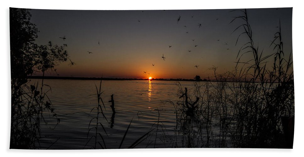 African Beach Towel featuring the photograph African Sunset by Suanne Forster