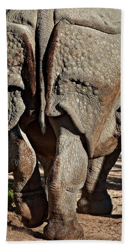 Rhino Beach Towel featuring the photograph Afterthought by Steve Harrington