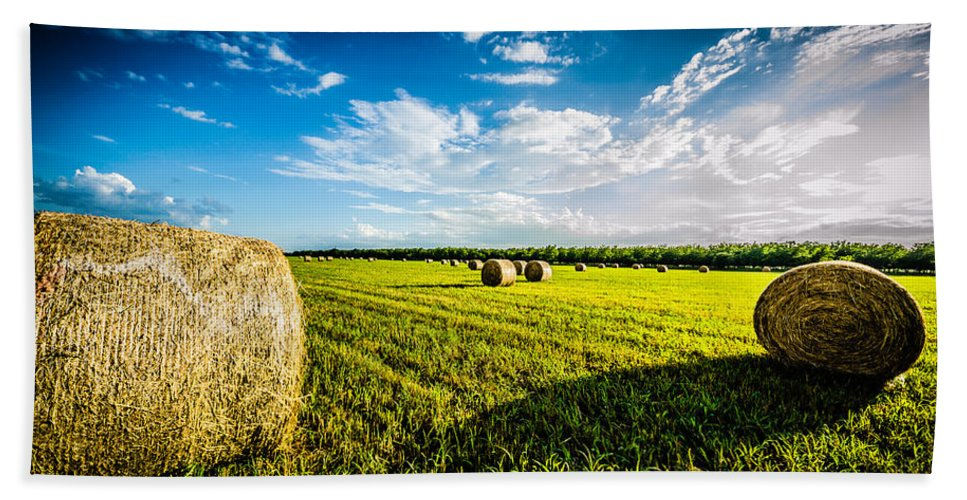 Hay Beach Towel featuring the photograph All American Hay Bales by David Morefield