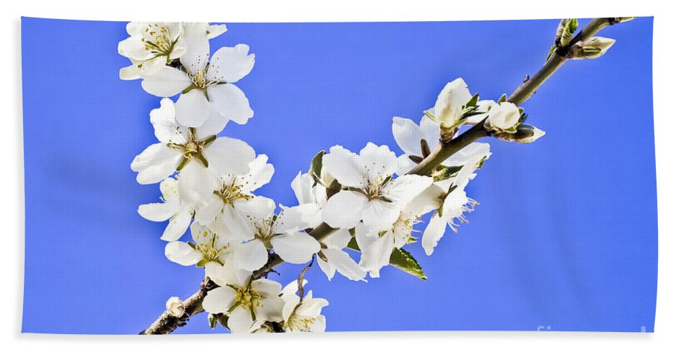 Almond Beach Towel featuring the photograph Almond Blossom by Heiko Koehrer-Wagner
