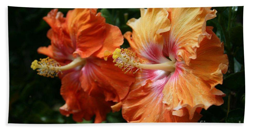 Aloha Beach Towel featuring the photograph Aloha Keanae Tropical Hibiscus by Sharon Mau
