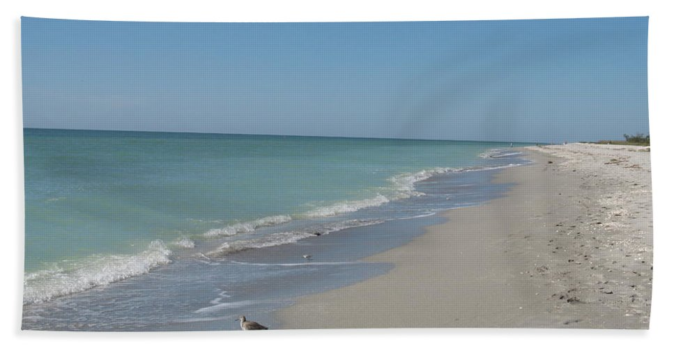 Beach Beach Towel featuring the photograph Alone At The Beach by Christiane Schulze Art And Photography
