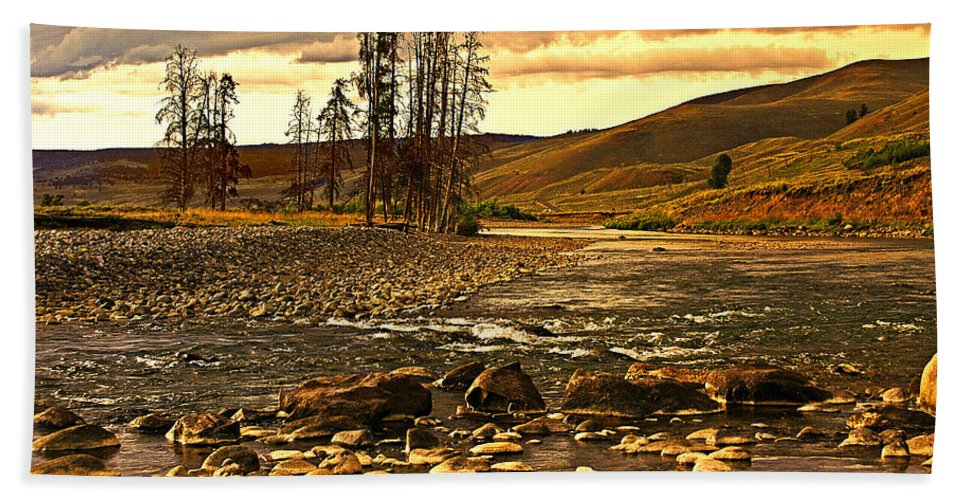 Yellowstone Beach Towel featuring the photograph Along The Larmar River by Marty Koch