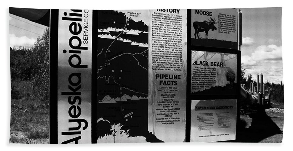North America Beach Towel featuring the photograph Alyeska Pipeline by Juergen Weiss