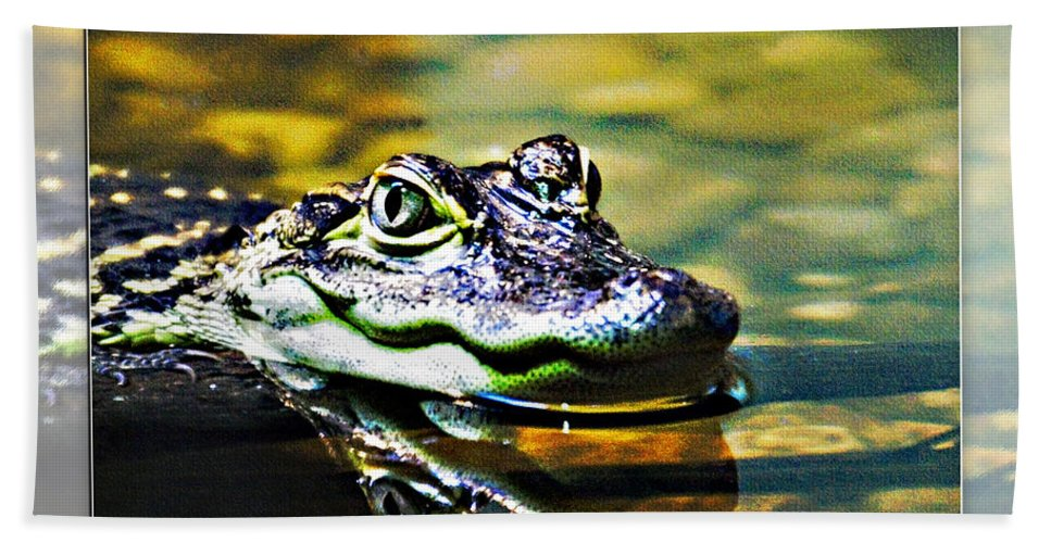 Rolling Hills Wildlife Adventure  Beach Towel featuring the photograph American Alligator 2 by Walter Herrit